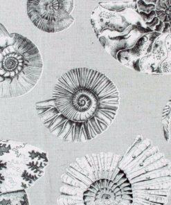 Simpuka kangas Fossilium Voyage Sisustusstudio Vitriini
