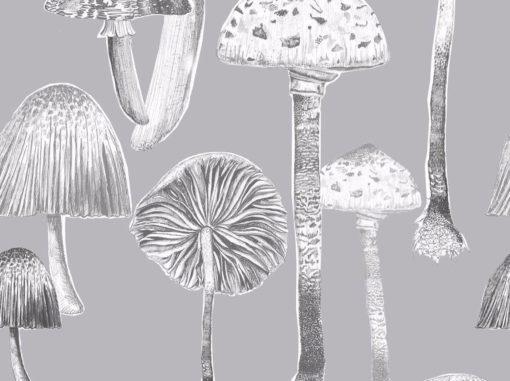 Tapetti hennot sienikuviot, Toadstools | Sisustusstudio Vitriini